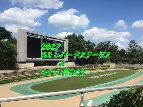 2017 レパードステークス画像2.jpg