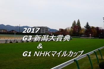 2017 新潟大賞典 NHKマイルカップ.jpg