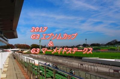 2017 エプソムカップ画像1.jpg