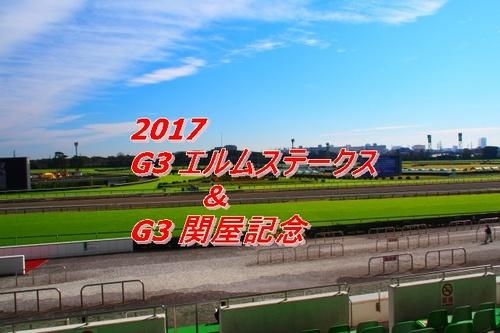 2017 エルムステークス 関屋記念画像2.jpg