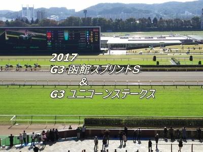 2017 函館スプリントS画像2.jpg