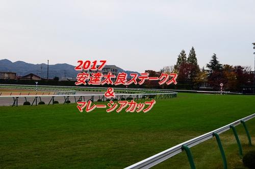 2017 安達太良ステークス画像2.jpg