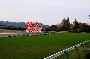 2017 桜花賞.jpg