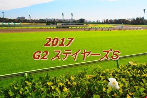 2017 G2 ステイヤーズS画像2.jpg