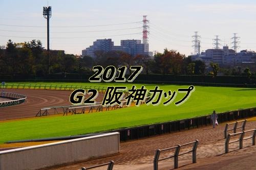 2017 G2 阪神カップ画像2.jpg