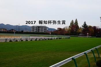 2017 弥生賞.jpg