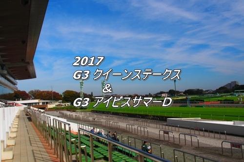2017 クイーンステークス画像2.jpg