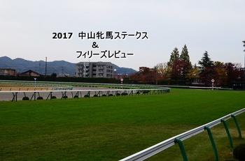 2017 中山牝馬ステークス.jpg